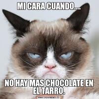 MI CARA CUANDO....NO HAY MAS CHOCOLATE EN EL TARRO.