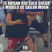 -TE AVISAN QUE SOLO QUEDA 1 MODELO DE SAILOR MOONYO: