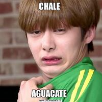 CHALE AGUACATE