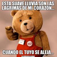 ESTA SUAVE LLUVIA SON LAS LÁGRIMAS DE MI CORAZÓN...CUANDO EL TUYO SE ALEJA...